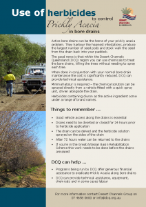 Diuron-for-prickly-acacia